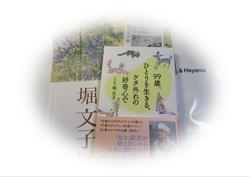 IMG_2057-01.JPG