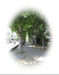 IMG_3784-01.JPG