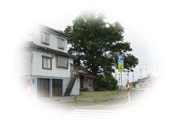 IMG_4443②.jpg