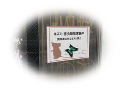 IMG_5666②.jpg