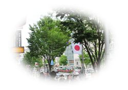 IMG_6563②.jpg